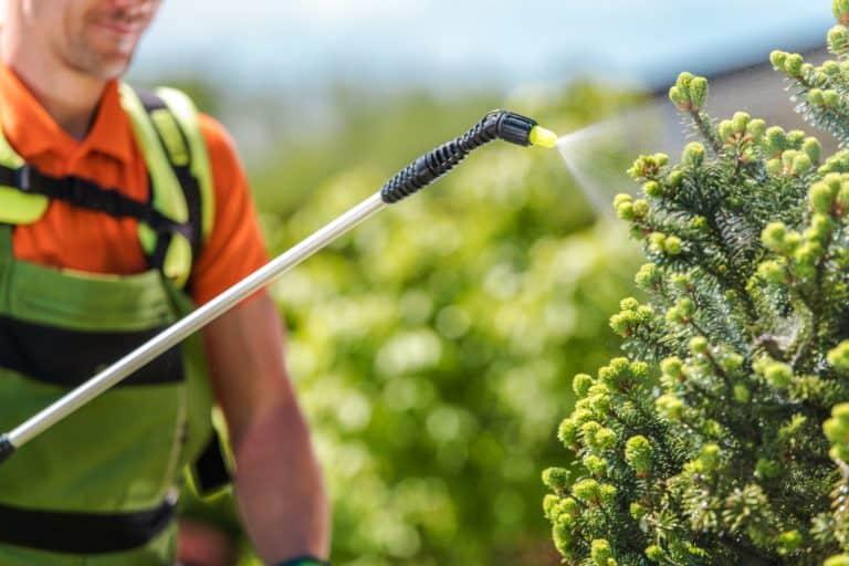 Produits phytosanitaires - Jardinerie du Tech